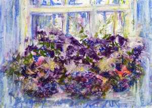 Window box petunias
