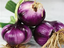 onion Southport Red